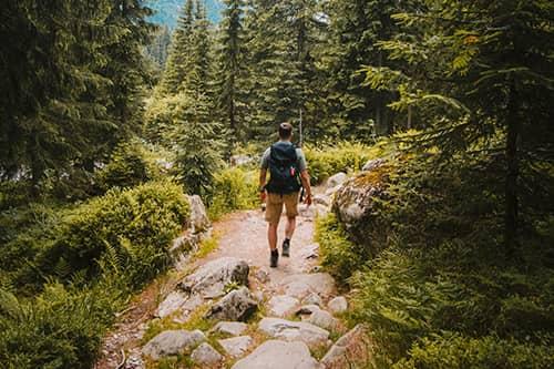 Blog Post - Hiking